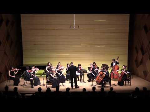 Dvorak Serenata op.22 per Archi