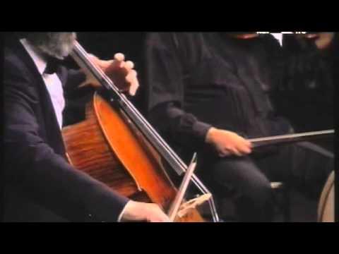 W.A. Mozart - Quintetto per 2 viole KV515 Do Magg.